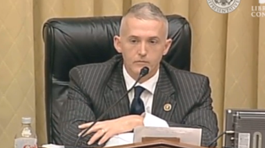 Trey Gowdy Puts Pro-amnesty Agitators In Their Place!