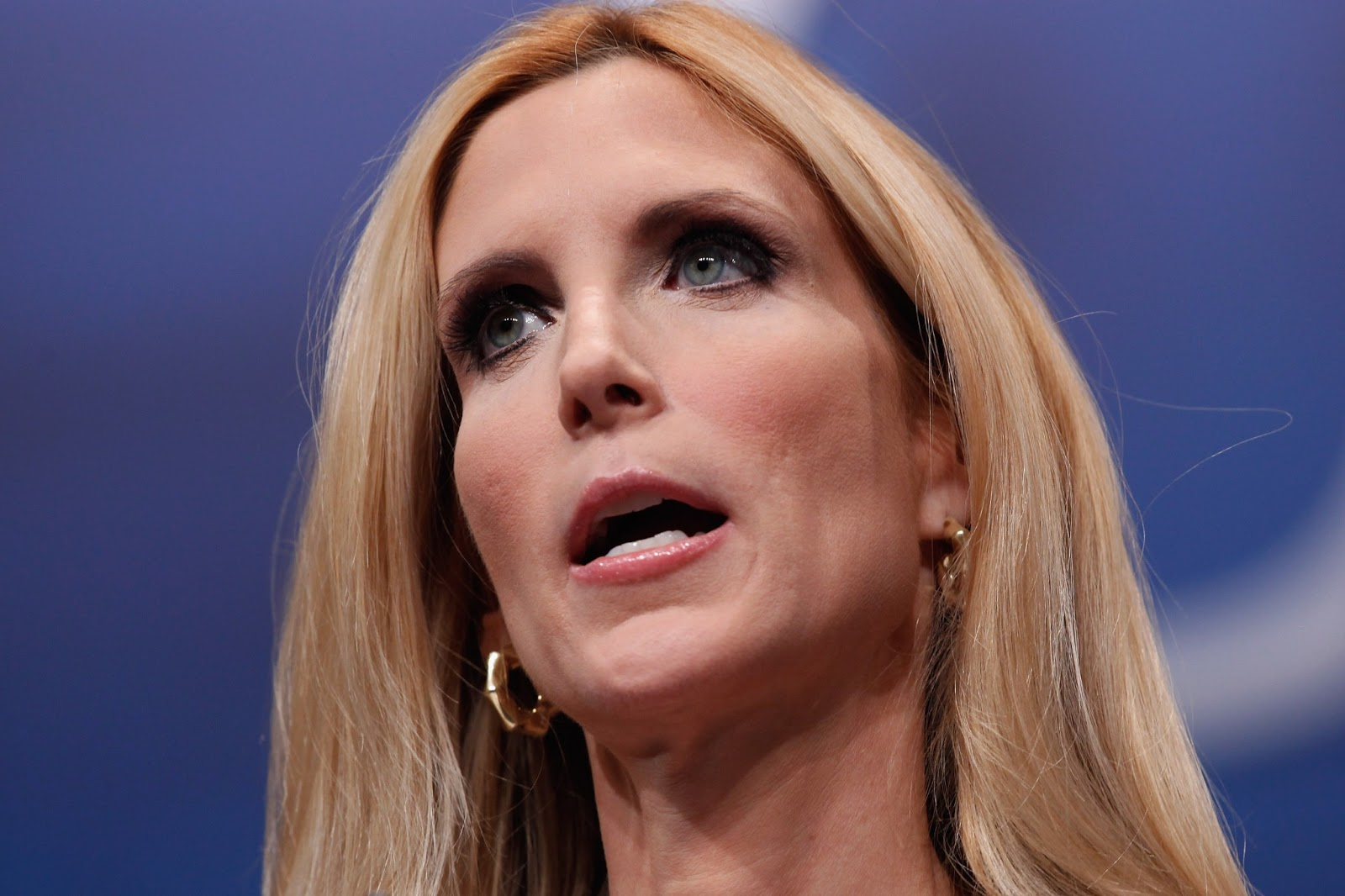 Ann Coulter Stuns Host With Comment on Immigrants, Islamic State