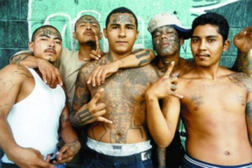 ILLEGAL ALIEN MS-13 GANG MEMBERS CHARGED IN MURDER…