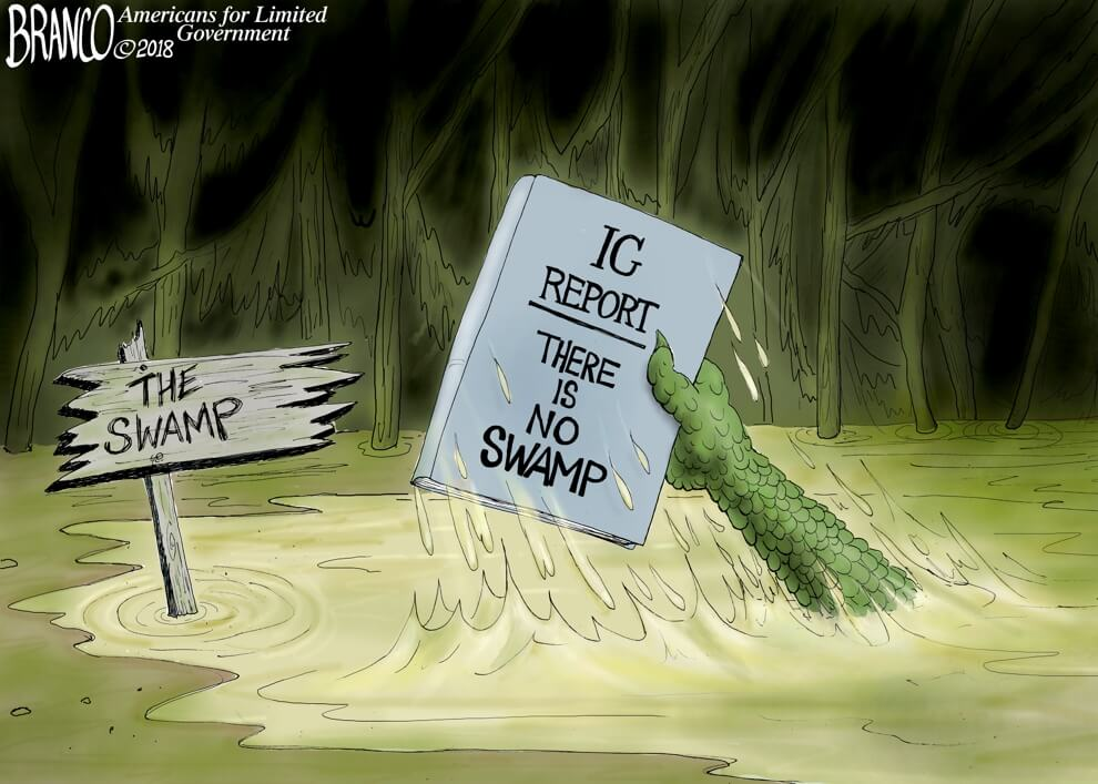 Lots Going on in the Washington Swamp