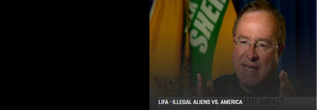 ILLEGAL ALIENS VS. AMERICA